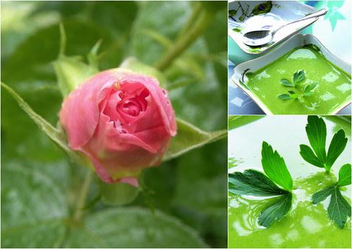 Celery Soup II