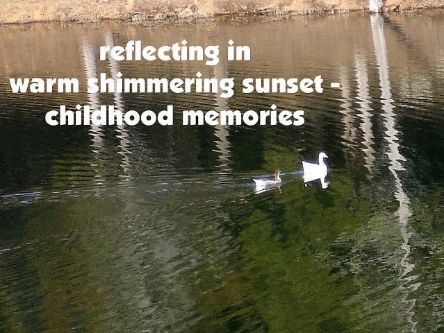 reflecting3_00