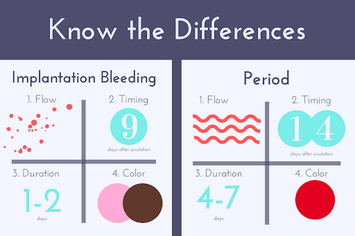 implantation bleeding after period date - maternity photos