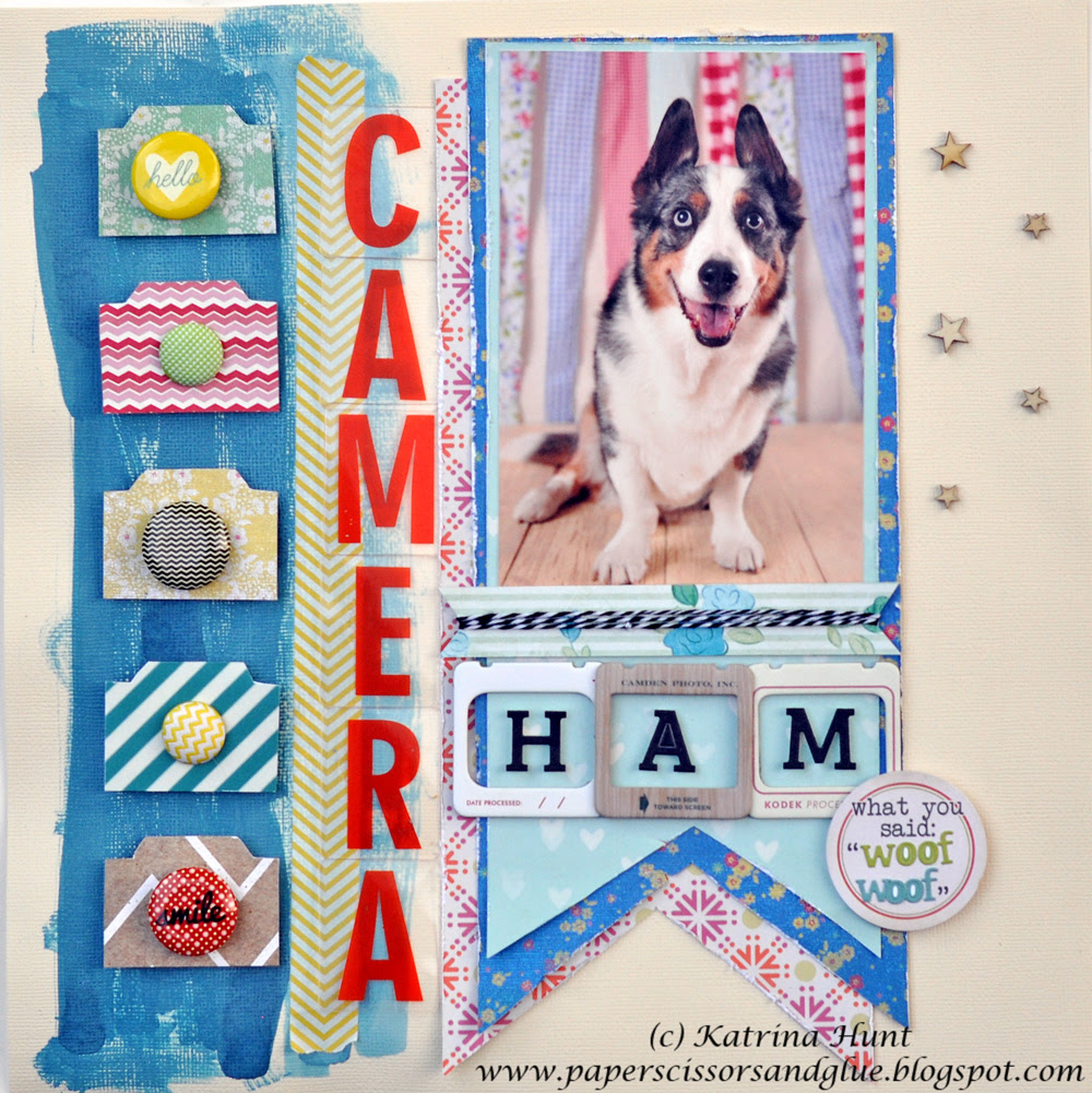 Camera Ham-Gossamer Blue June #3