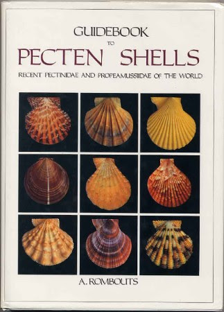 Pecten Shells Guide Book