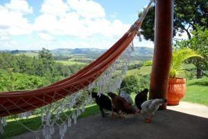 Redes de dormir ou descansar… as gostosas redes nordestinas!