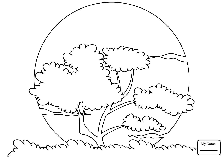Simple Water Cycle Drawing at GetDrawings | Free download
