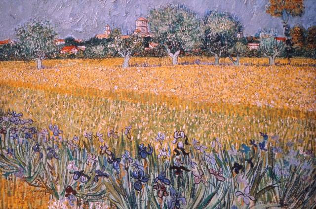 Field with Flowers near Arles, 1888. Vincent Willem van Gogh, Dutch, 1853 ‑ 1890. Oil on canvas, 21 1/4 x 25 9/16 inches (54 x 65 cm). Van Gogh Museum, Amsterdam.