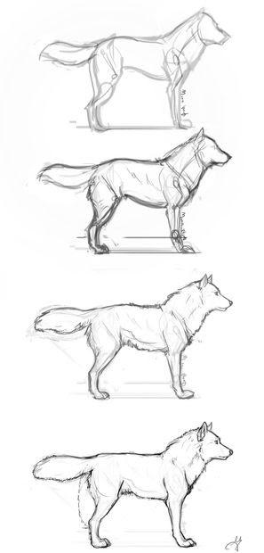 wolf gesicht zeichnen einfach