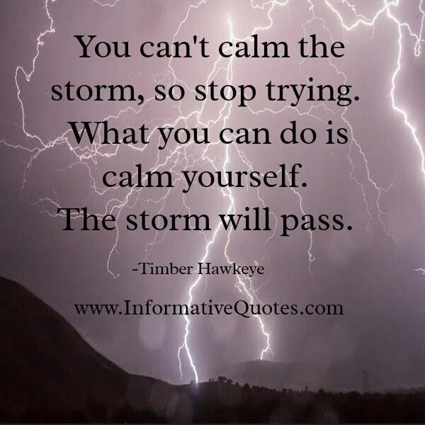 You Cant Calm The Storm So Stop Trying Informative Quotes