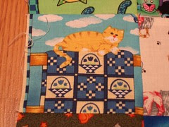 kitty on a quilt
