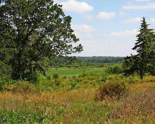 Wilds of Missouri