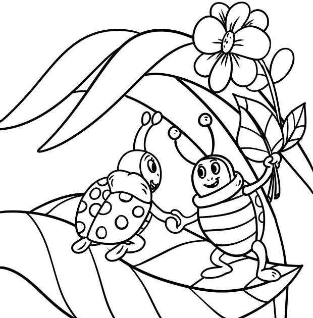 malvorlagen insekten gratis  catherine miller grundschule