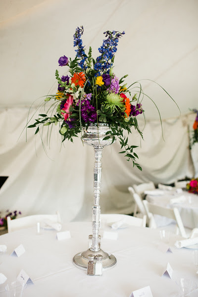 An intimate backyard wedding reception in Rockford IL near Sinnissippi with close friends and family.