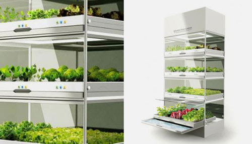 The Nano Garden Lets You Grow Veggies Right in Your Kitchen | Brit ...