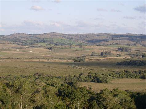 Uruguayan savanna   Wikipedia