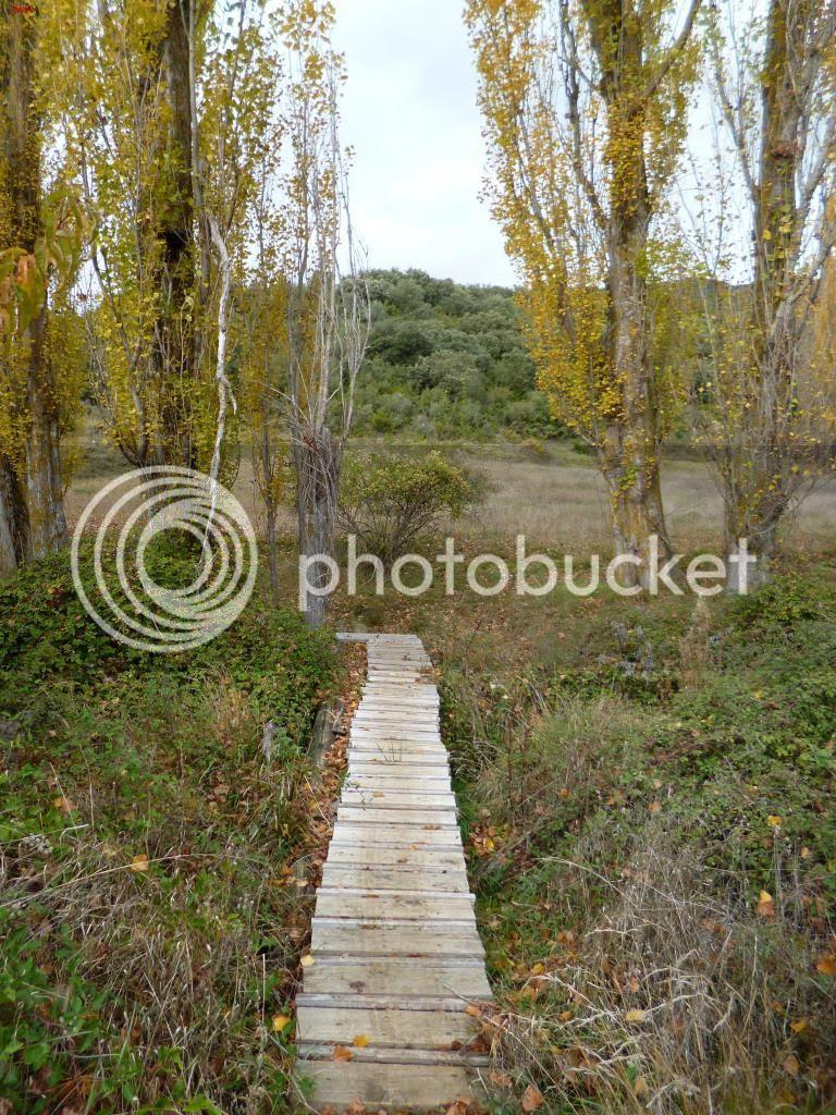 photo PENtildeAUNZUE-ALAIZ15-11-14193_zps3913b28d.jpg