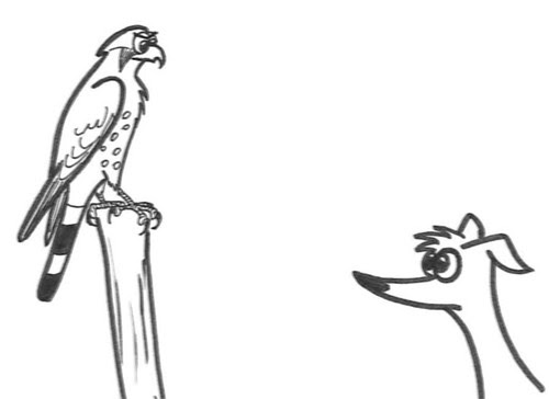 Comic-Whippet-Hawk