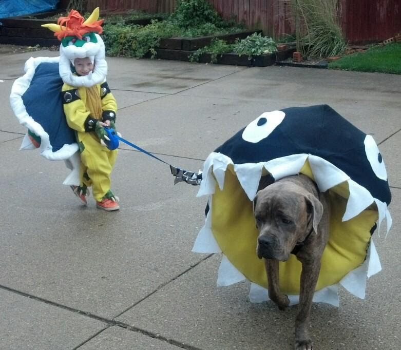The 50 Best Kid And Dog Duo Halloween Costumes Thriveworks