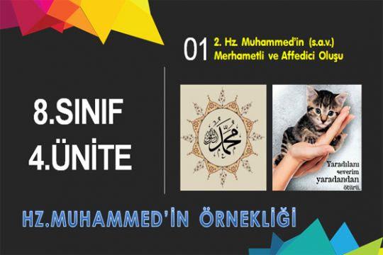 8.4.2.Hz.Muhammed