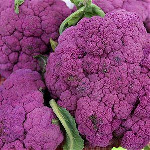 Purple Cauliflower at the Portland Farmers Market.