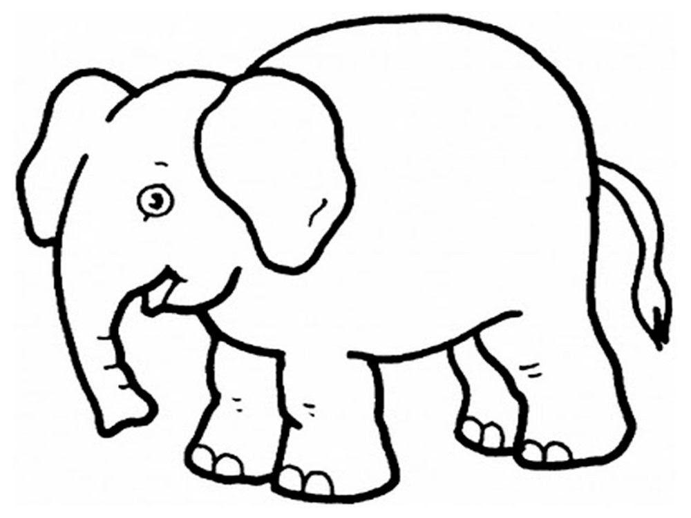 Galería De Imágenes Dibujos De Elefantes