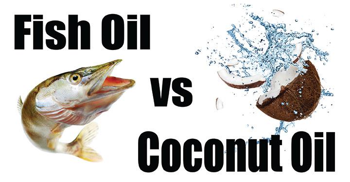 Fish Oil vs Coconut Oil GOOD
