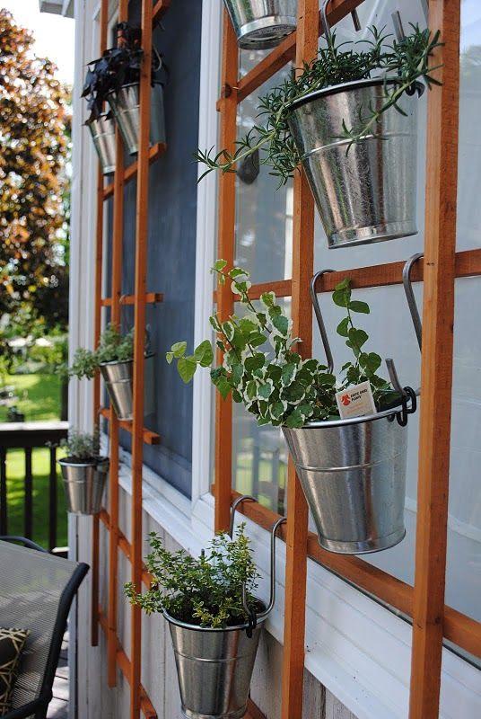 DIY herb wall!
