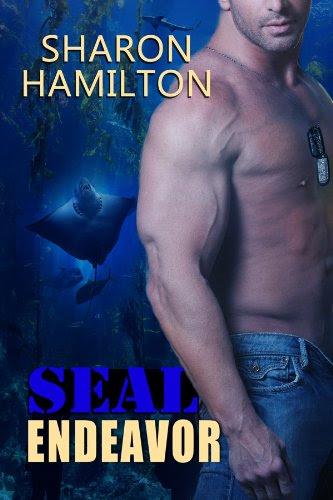 SEAL Endeavor (SEAL Brotherhood) by Sharon Hamilton