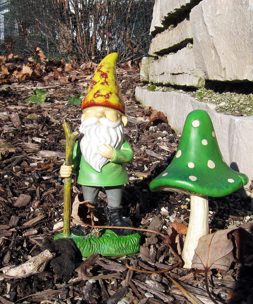 gnome friend