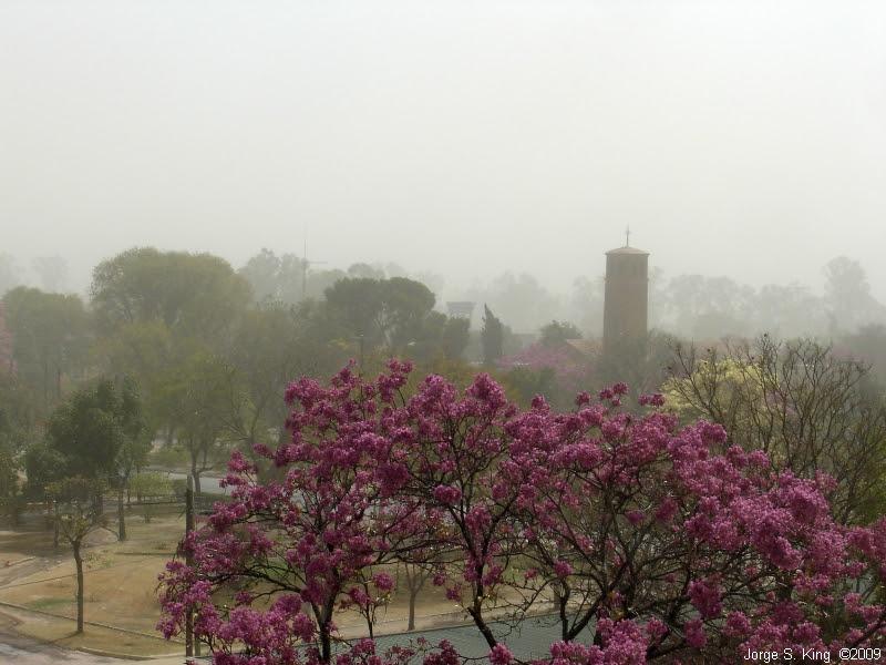 Viento Norte