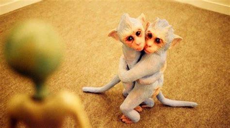monyet takut alien foto lucu