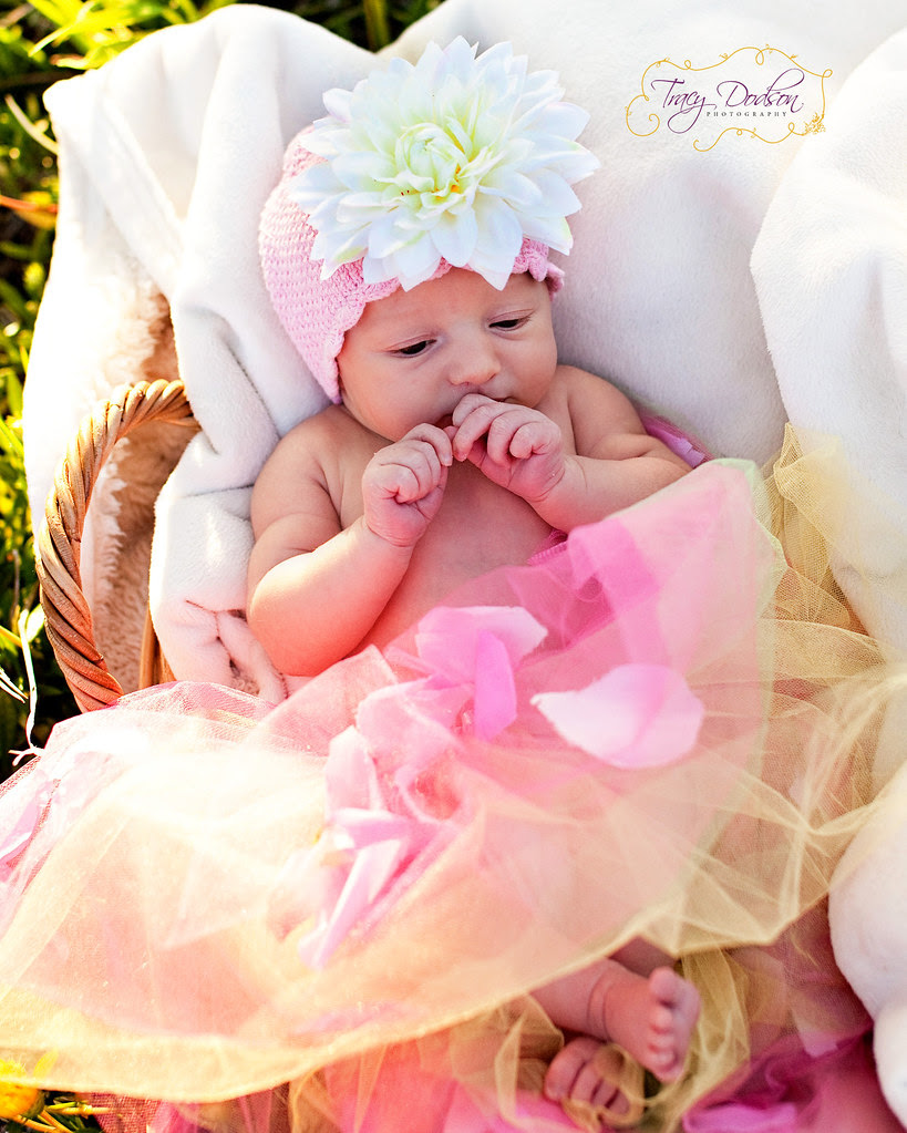 Sadie Newborn | Murrieta Photography
