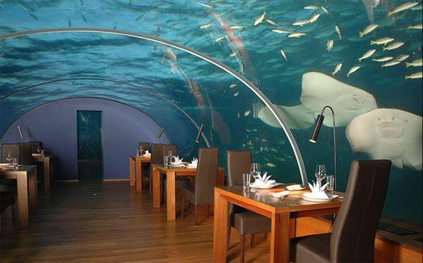 ithaa-undersea-restaurant-4