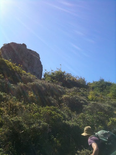 Hiking in Marin with Hall Newbegin