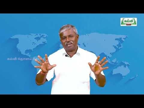 4th Social Science வரலாற்று சிறப்புமிக்க இடங்கள் அலகு 7 Kalvi TV