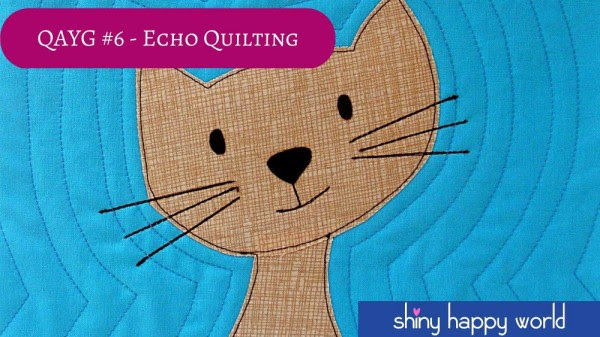 Video - Quilt As You Go #6 - Echo Quilting