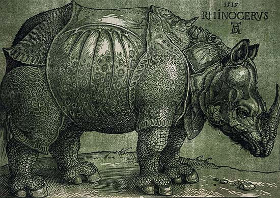 The rhinoceros of Dürer, 8th edition by Willem Janssen, Amsterdam, 17th century
