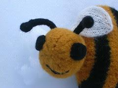 Closeup of Bee Sweet 3