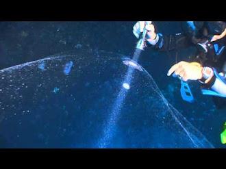 Deep Sea Mystery Solved in Turkey