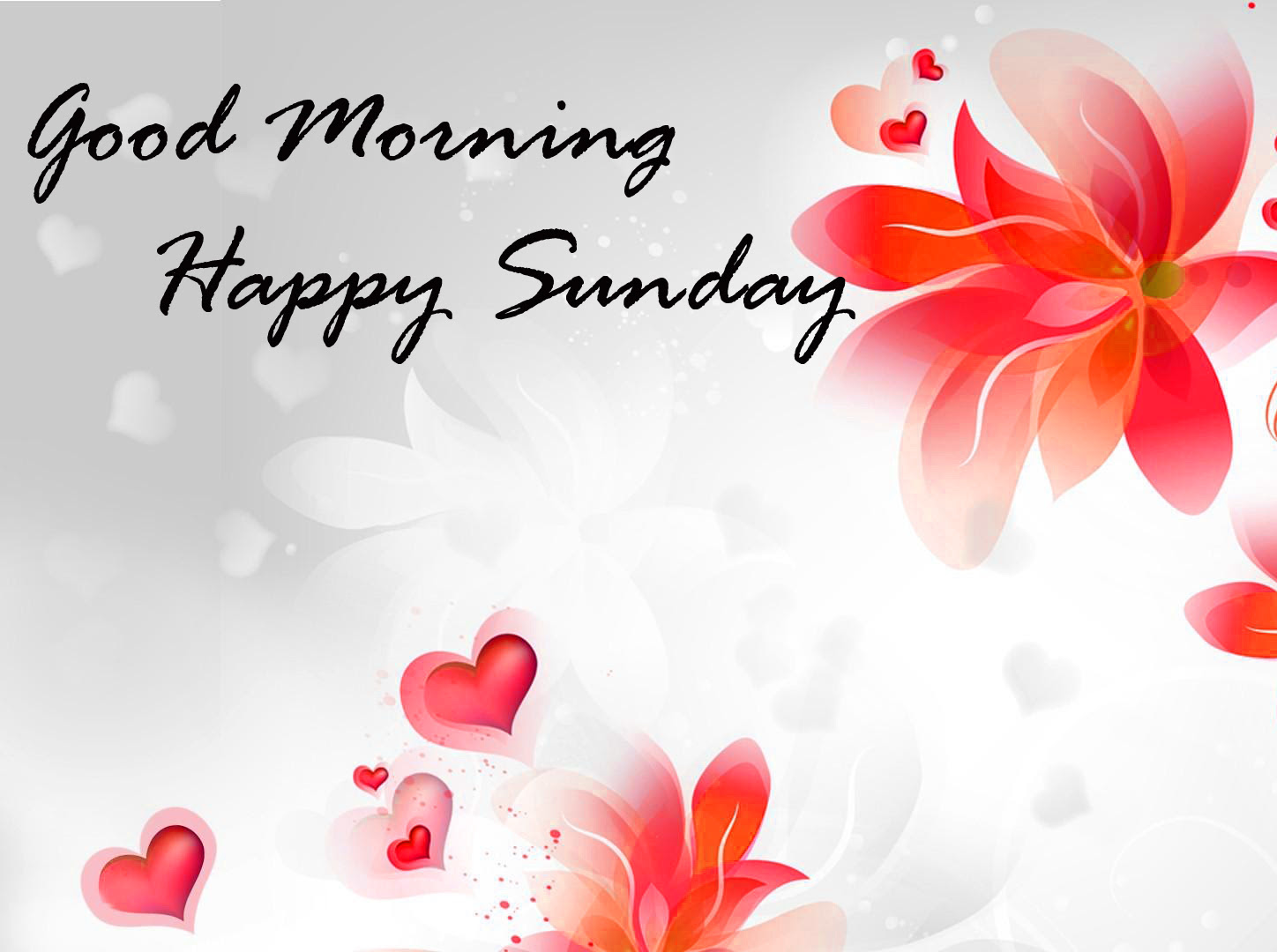 HD Exclusive Good Morning Love Wallpaper Download
