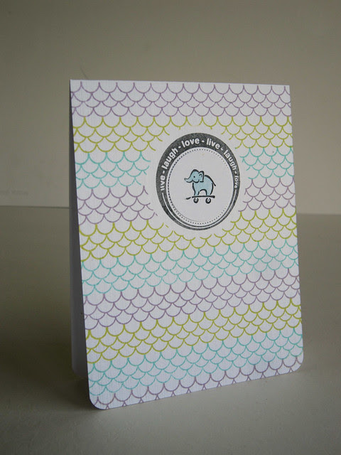 Boy or Girl Baby Elephant Scallop Card