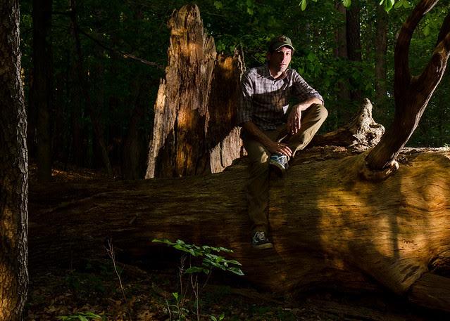 On a Big Tree