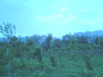 Природата в Стара Планина автор: Н. Пеняшки - Плашков *********************** Стара планина ухае на зеленина. Вечна природа.