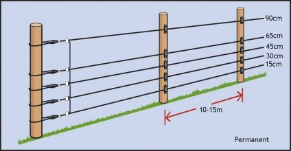 Electric Fence Electric Deer Fence Wire Spacing