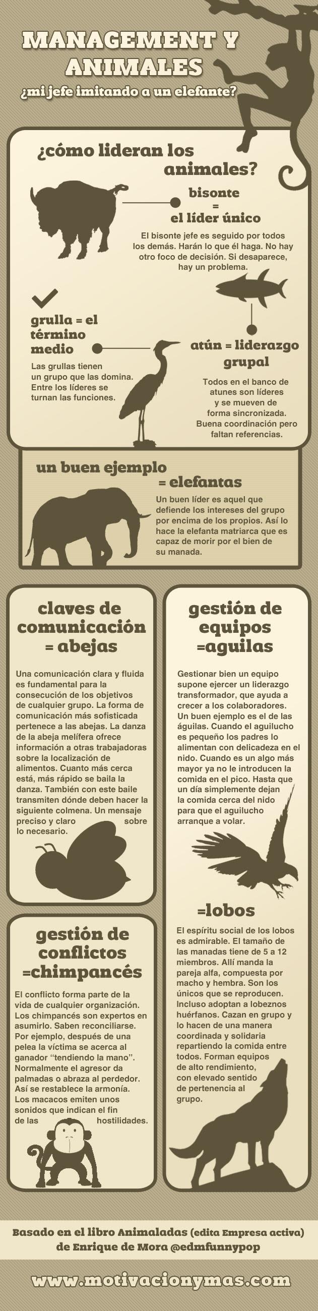 Mangement y animales