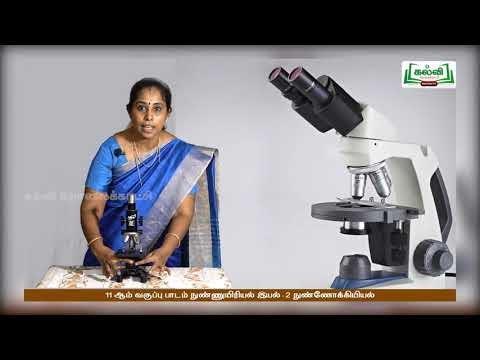 11th Microbiology இயல் 2 நுண்ணோக்குயியல் Kalvi TV