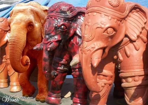 Картинки по запросу фото разные слоны