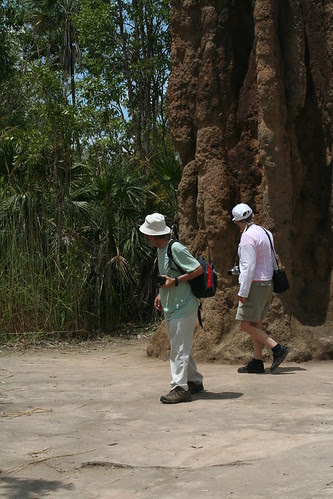 Magnetic Termite Mound, Litchfield National Park