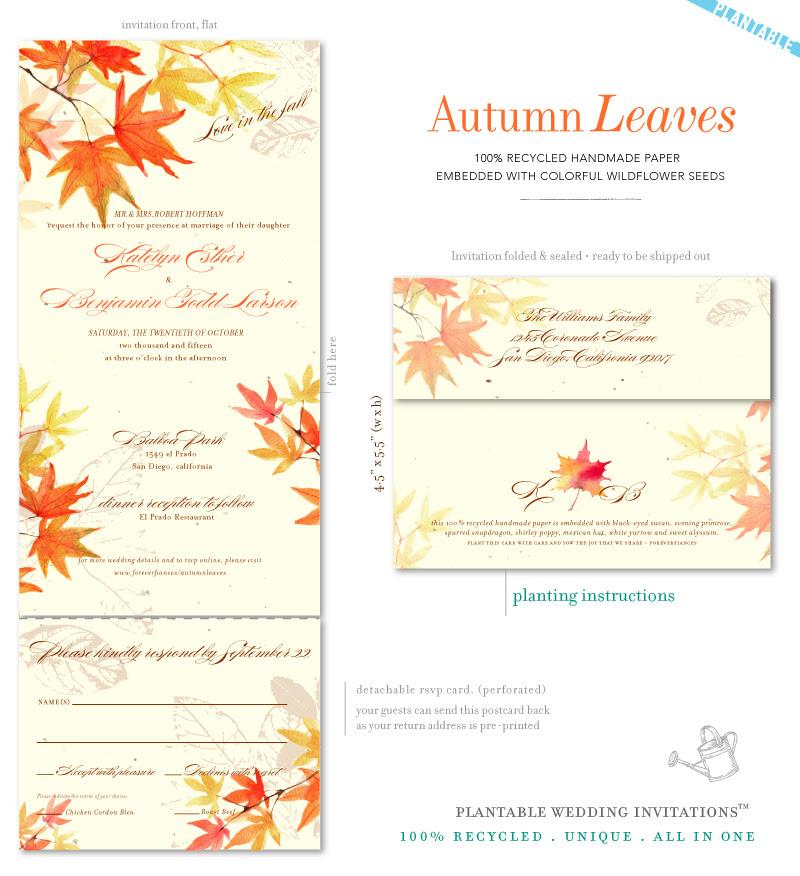 Autumn Leaves (plantable)