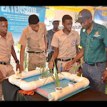 High imports threaten food security …We need to 'Grow What We Eat, Eat What We Grow', say stakeholders - Jamaica Gleaner