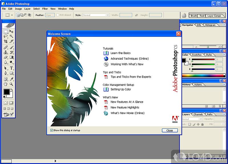 Free keygen for photoshop cs6 macromedia