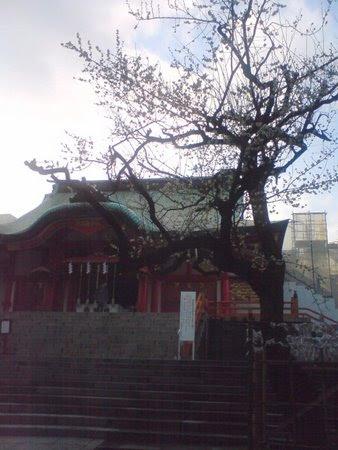 花園神社 2