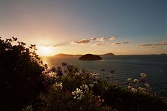 Another great sunset in Coromandel Town